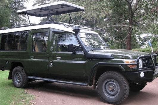 Road Safaris